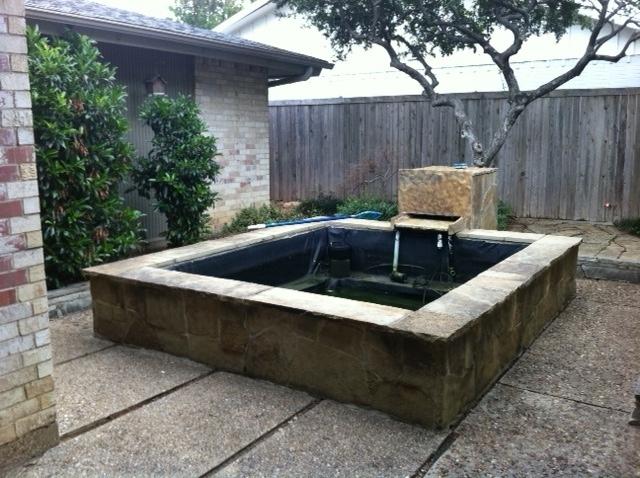 New north dallas modern for Koi pond modern